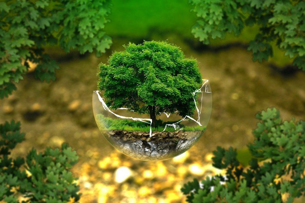 bumi kita, environmental protection, nature conservation, ecology